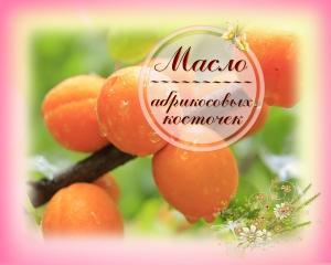 Масло абрикосовых косточек